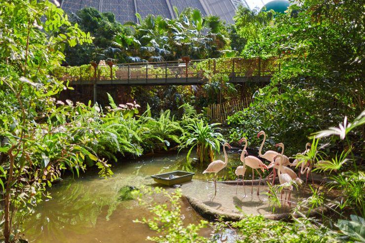 Foto: Tropical Islands