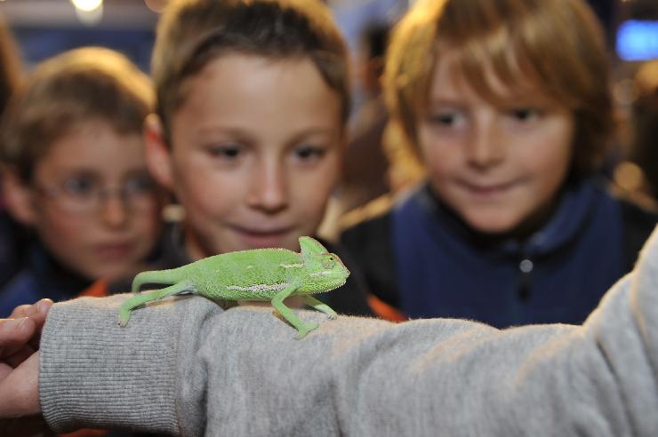 Foto: Europa Park, Science Days für Kinder