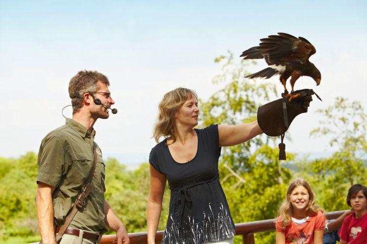 Foto: Erlebnispark Tripsdrill, das Wildparadies