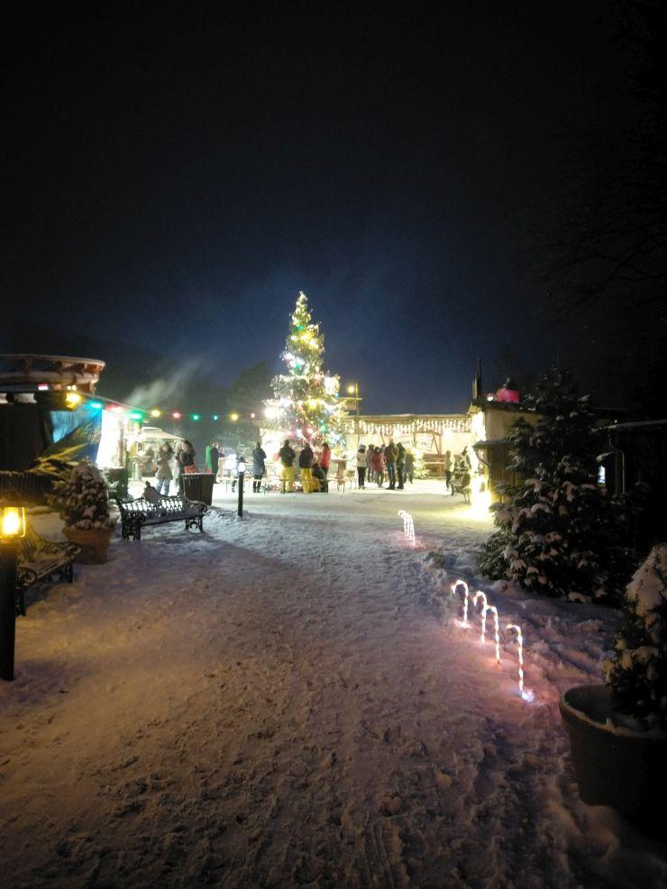 Weihnachtsbaum im Foto: FORT FUN Abenteuerland